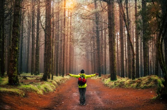 No time to Meditate? Do it while out walking